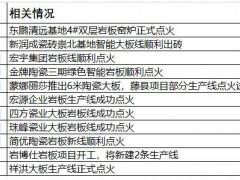 2021年16家陶瓷企业岩板/大板新线投产